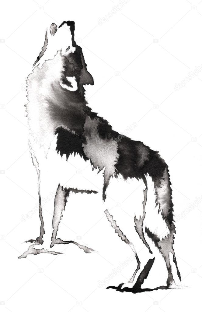 Cerna A Bila Monochromni Malby S Vodou A Inkoust Kresleni Vlci