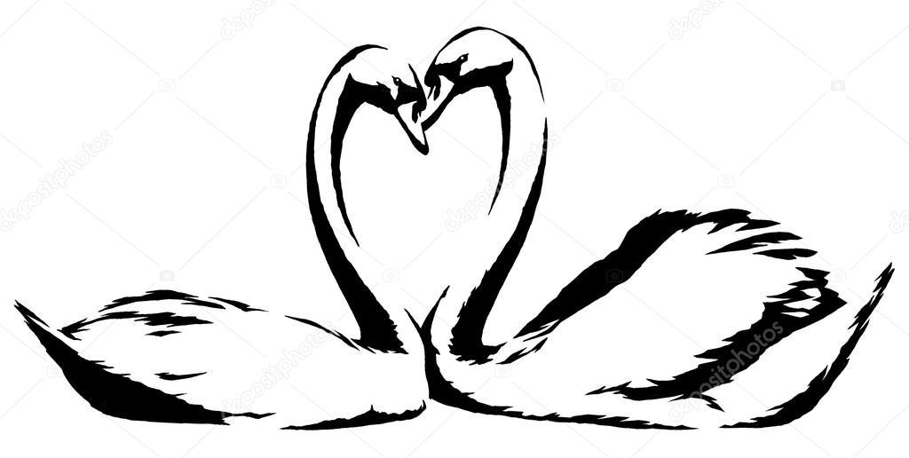 schwarz wei linear farbe zeichnen schwan vogel illustration stockfoto. Black Bedroom Furniture Sets. Home Design Ideas