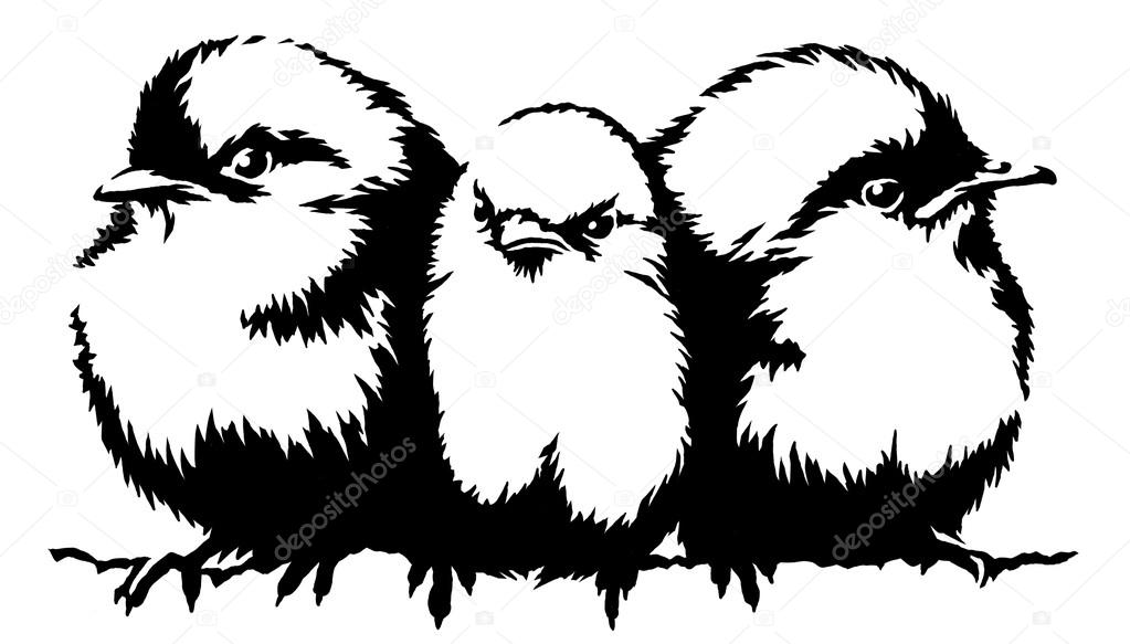 Noir Et Blanc Peinture Linéaire Dessiner Illustration Oiseau
