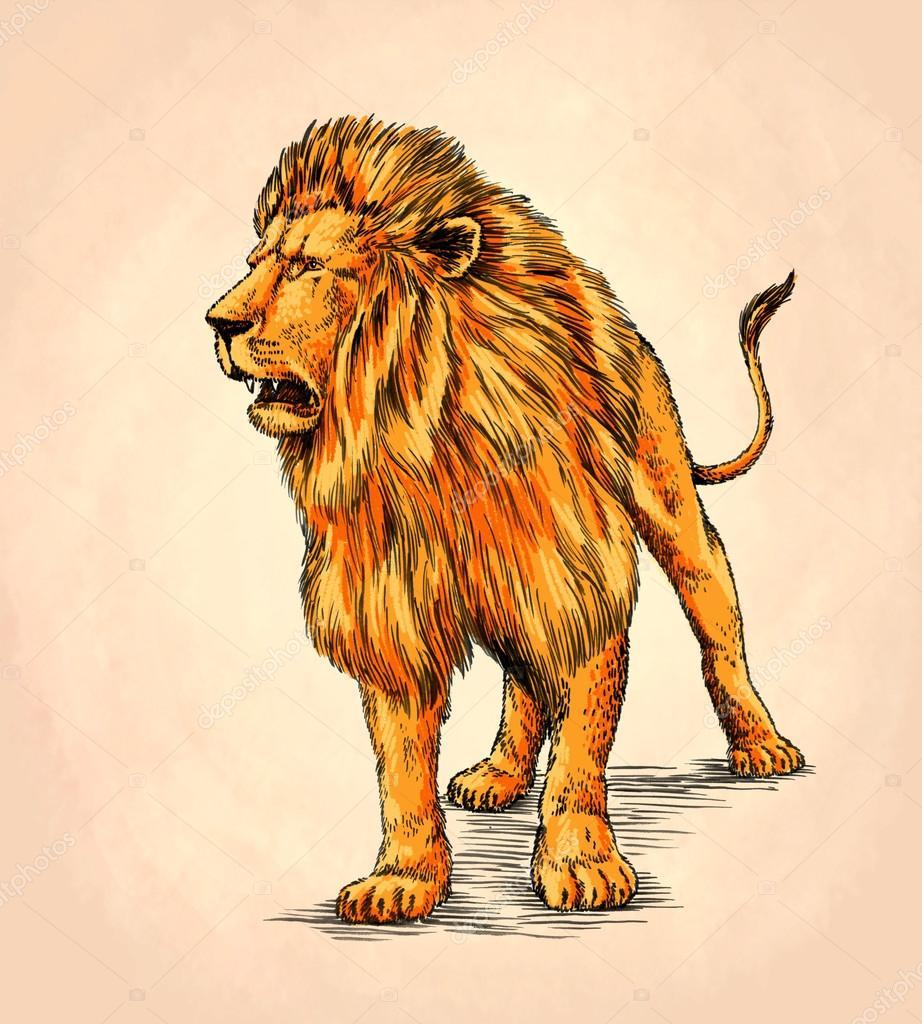 Leon Dibujar Un Color Cepillo De Pintura León Aislado De Tinta