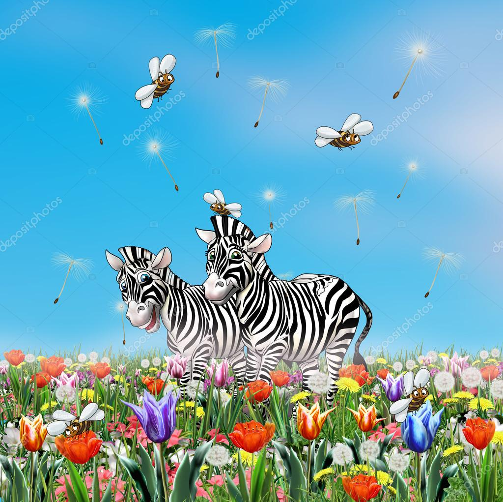 cute zebras zebras cartoon character zebras smile zebra