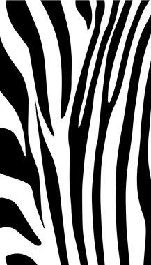 Zebra background. Zebra black stripes pattern. Black lines vector decor. Animal African wallpaper.