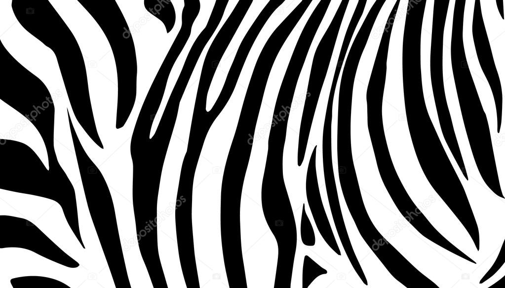 Vector Lines Stripes Zebra Background Zebra Black