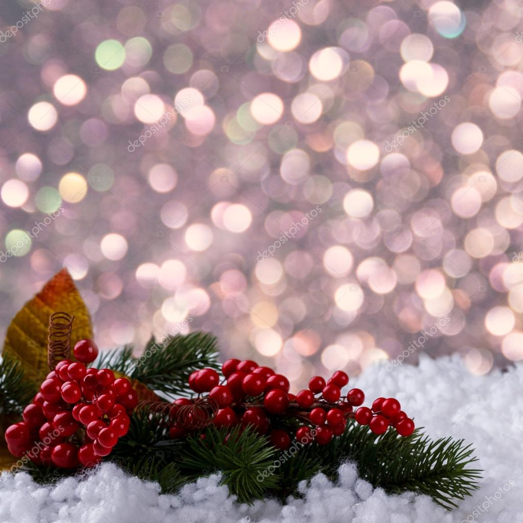christmas background for branch and red berries on snow photo by lana_m