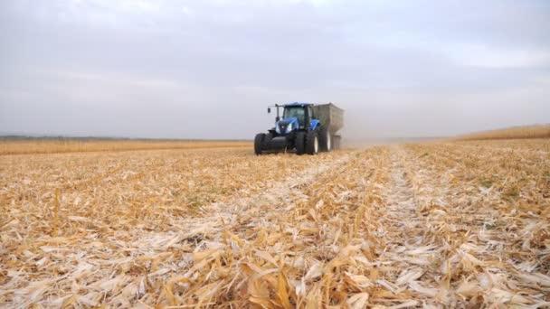 Moderní traktor přepravující kukuřičný náklad na poli během sklizně. Zemědělský stroj projíždí zemědělskou půdou s obilím v přívěsu. Scénická krajina. Koncept farmaření. Zpomalený pohyb