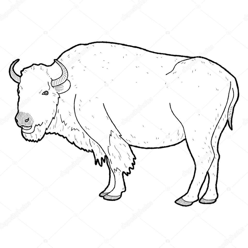 Animal de bisonte americano — Fotos de Stock © lechieng.k.gmail.com ...