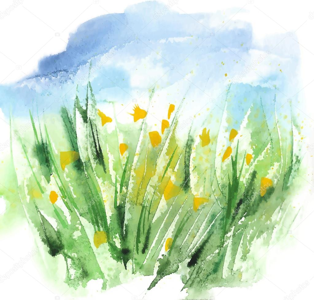 Watercolor Organic Eco Friendly Green Grass And Yellow Flowers Field With Blue Sky. Vector Background