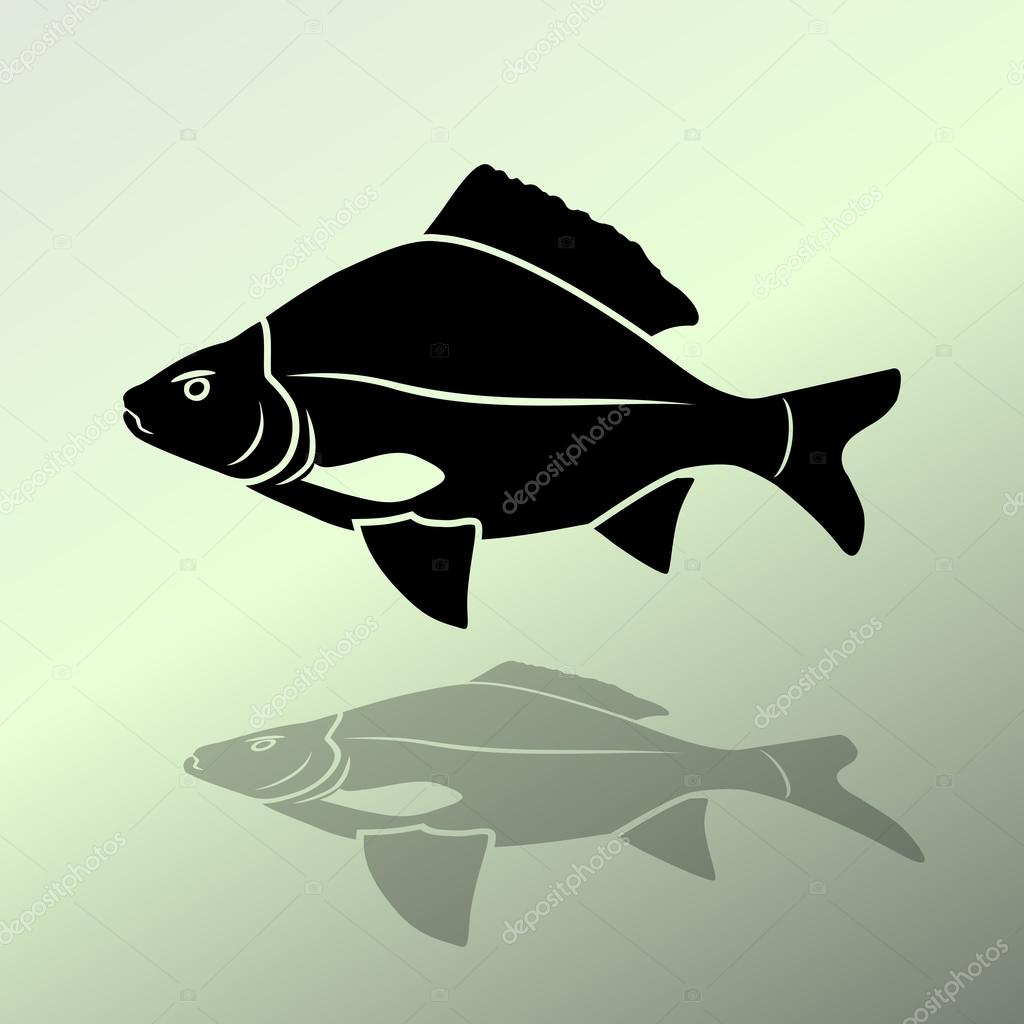 Fish icon. Food symbol. Cyprinidae family. Fresh-water, fish color ...