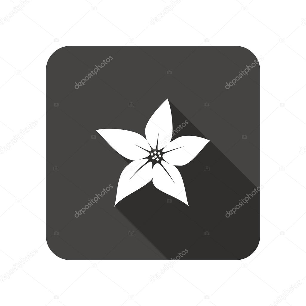 Lily flower icons floral symbol rounded square flat icon with long lily flower icons floral symbol rounded square flat icon with long shadow vector izmirmasajfo