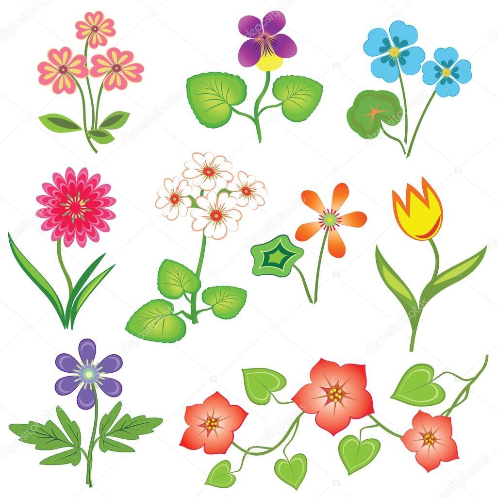 Blumen gesetzt. Kapuzinerkresse, Primel, Viola, Anemone, Tulpe ...