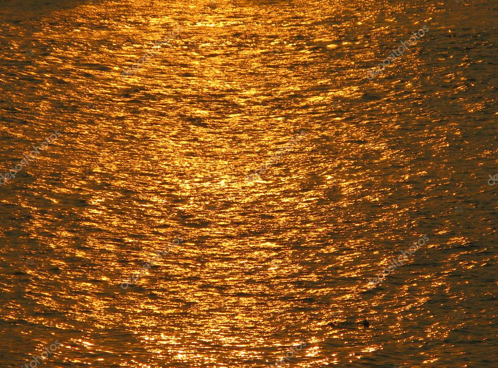 Golden Reflection of the River