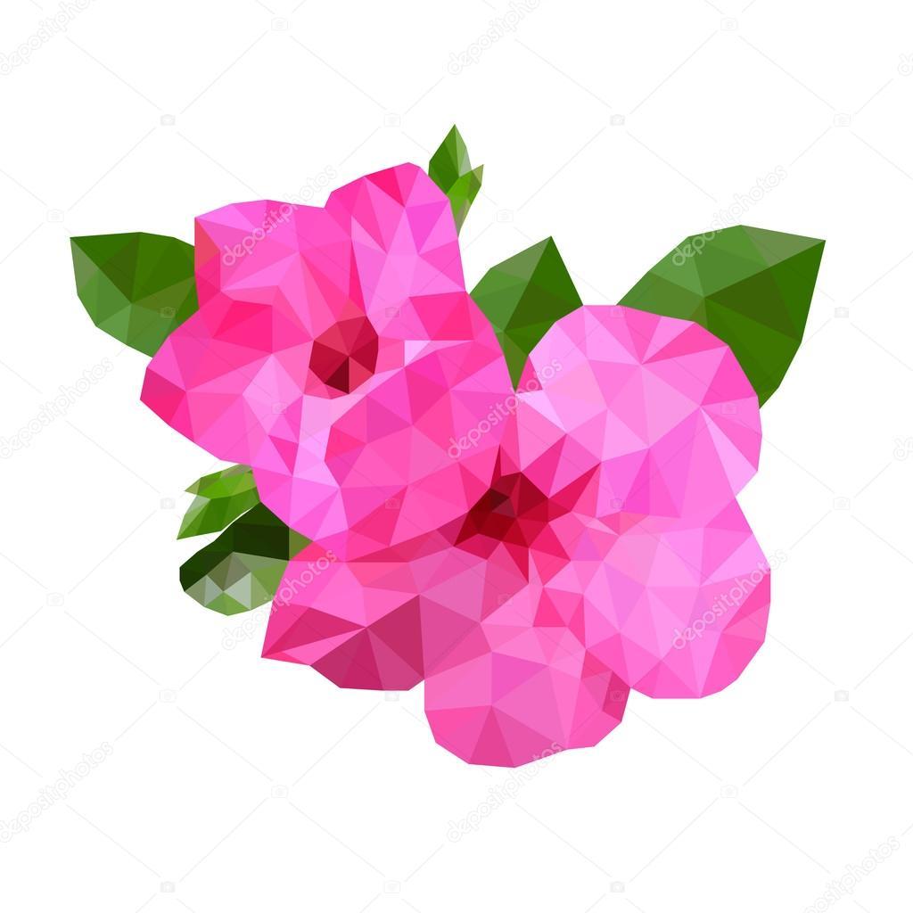 Flor de color rosa bajo polígono con hoja verde sobre fondo blanco ...