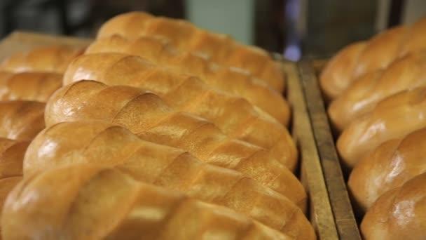 Brunátný čerstvě upečený chléb