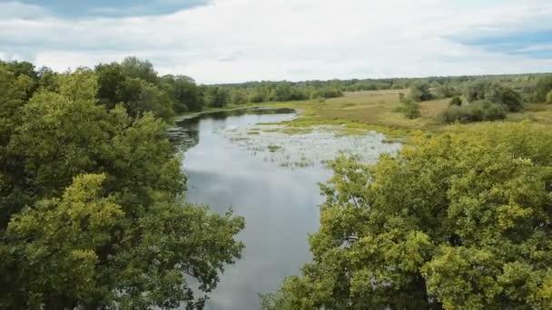 aerialshot malé klidné řeky v létě