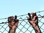 Dirty and discolored hands clinging to a steel barb wire fence