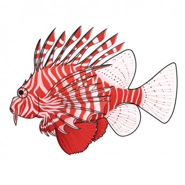 Lionfish. Venomous marine fish.