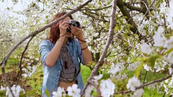 woman taking photos with of blooming tree