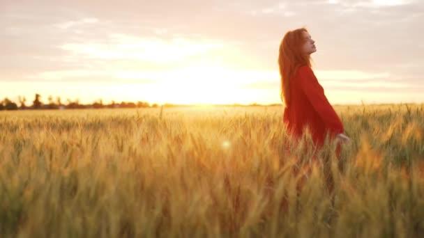 Krásná mladá dívka s sexy vlasy v červených šatech v poli. Zpomalený pohyb