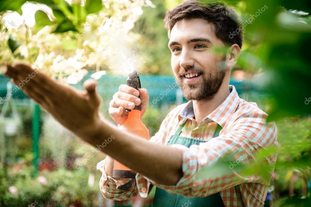Young handsome cheerful gardener smiling, watering, taking care of flowers.