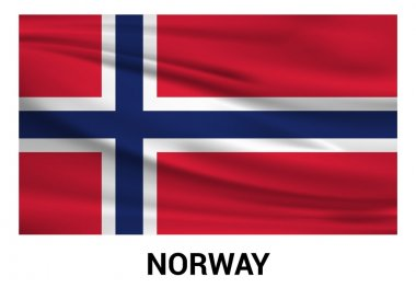 Norway flag in official colors