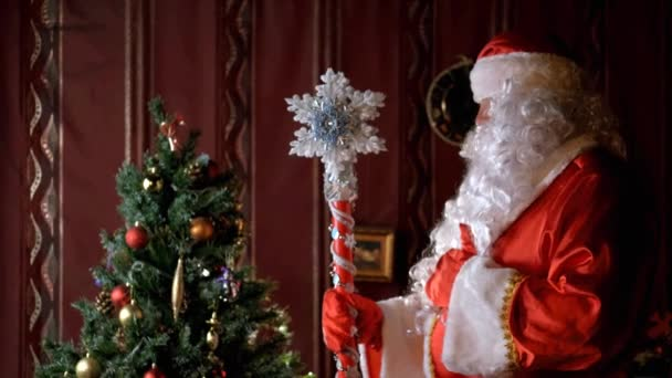 Starší Santa Claus s bujnou bílou bradkou osvětluje Nový rok strom s magií. Magická hůl. Otče Froste. Vánoce a Nový rok. Dovolená a oslava. 4K