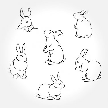 Rabbit white silhouettes