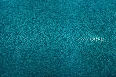 stingray leather color