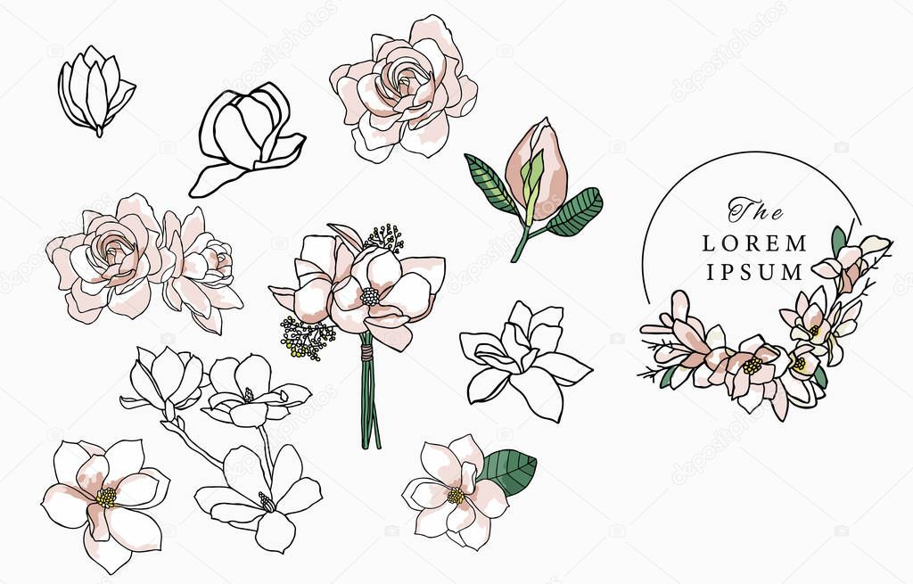 Line flower collection with magnolia icon