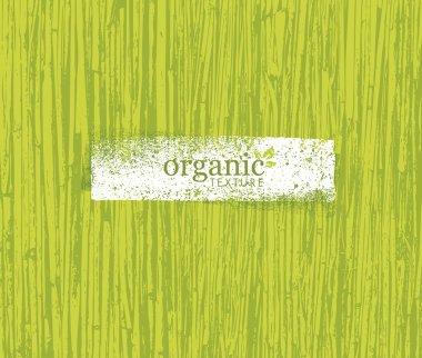 Organic Nature Bamboo Background