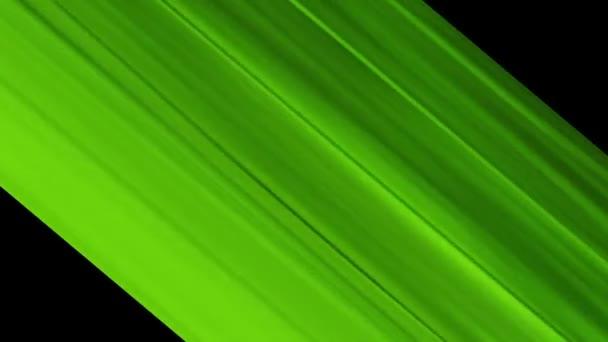 Animált mozgó háttér. elvont dekoratív lágy tónusok zöld akril festékkel. Absztrakció gyors mozgás. 3D renderelés animáció fekete háttérrel. Számítógépes grafika fekete háttérrel