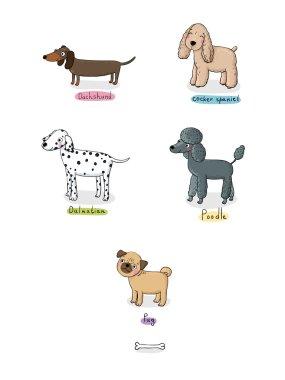cute cartoon dogs of various breeds .