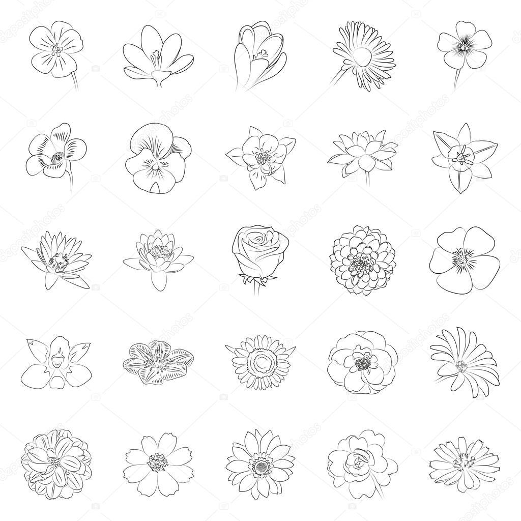 Simple black outline flower icon set — Stockvector