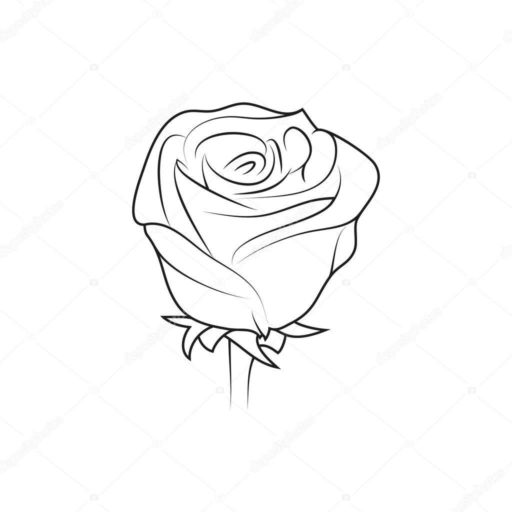 Rose Flower Simple Black Lined Icon On White Background