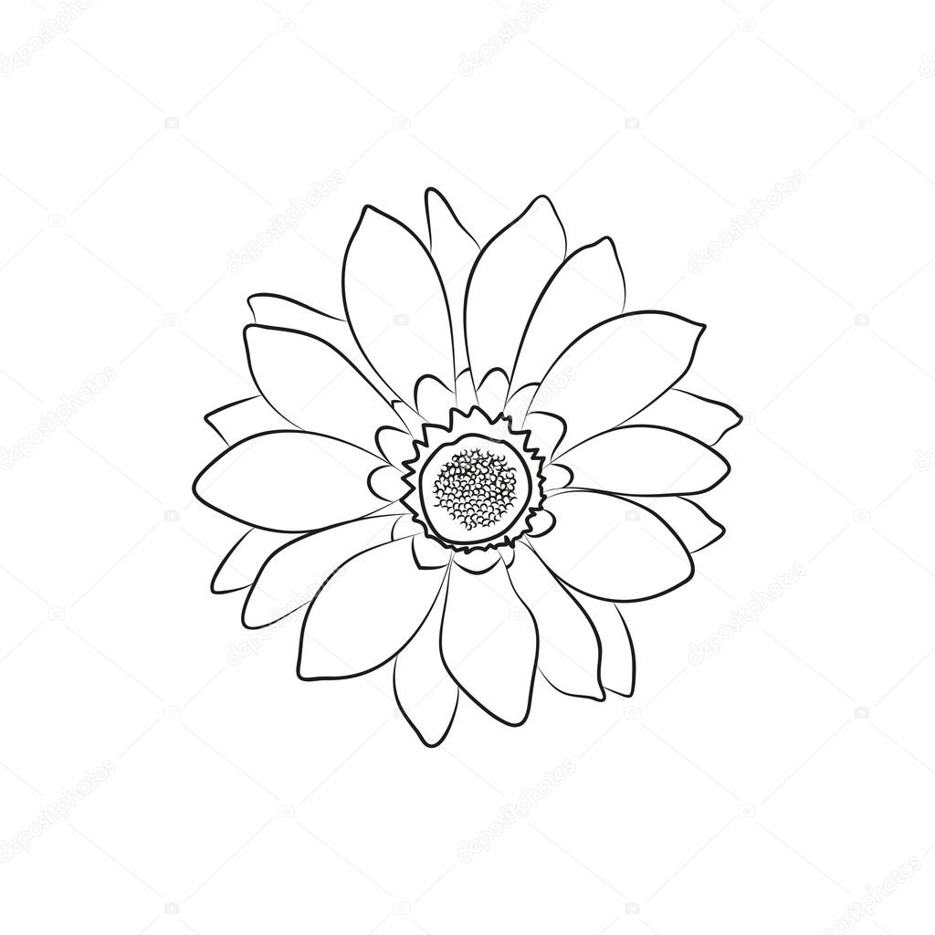 Beautiful Flower Simple Black Lined Icon On White Background