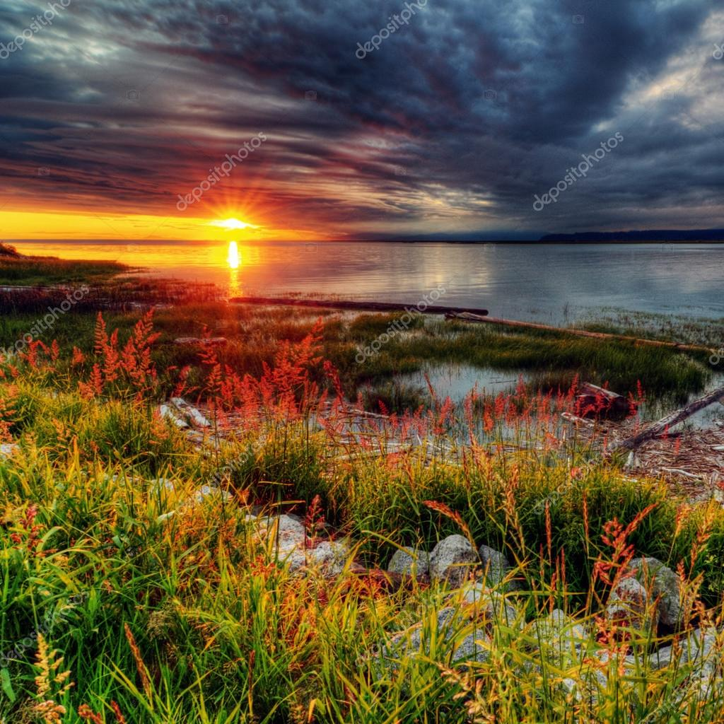 Glorious sunset over grassy and rocky shore