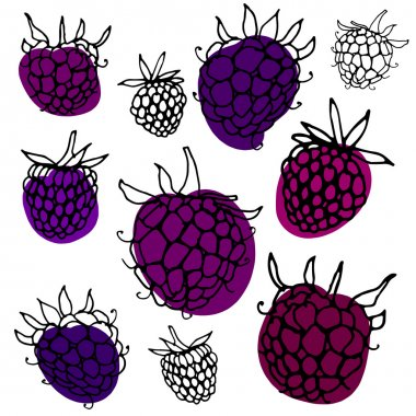 Pattern with hand drawn blackberry.