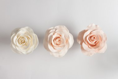 Beautiful fondant roses