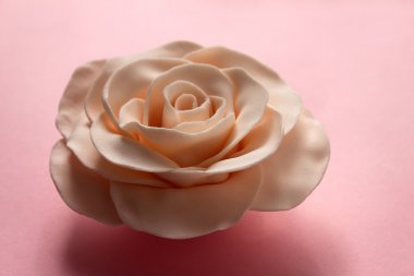 Beautiful fondant rose