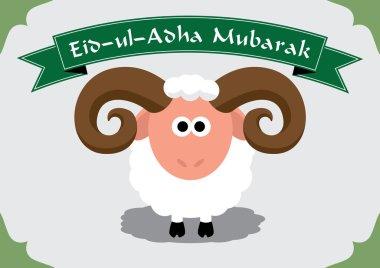 Cute sheep for Muslim festival