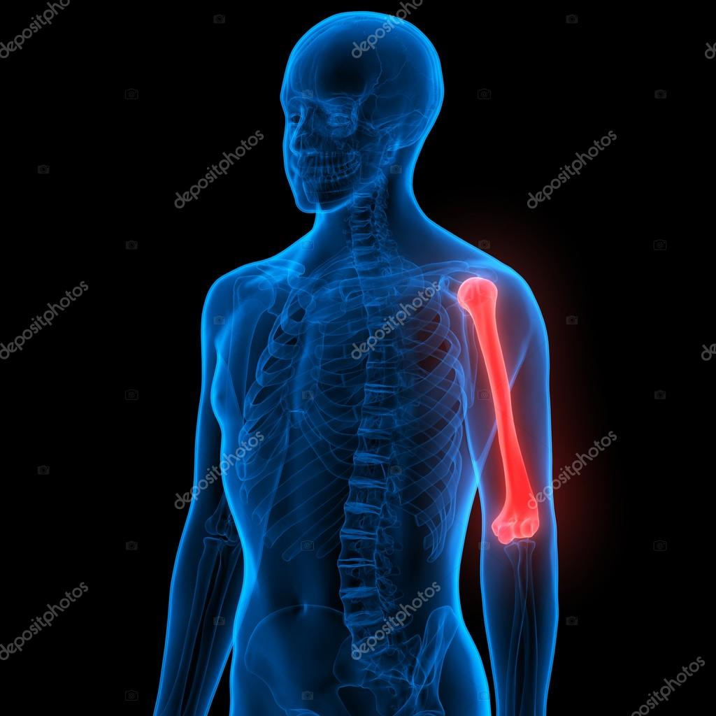 Cuerpo humano huesos dolores en las articulaciones — Fotos de Stock ...
