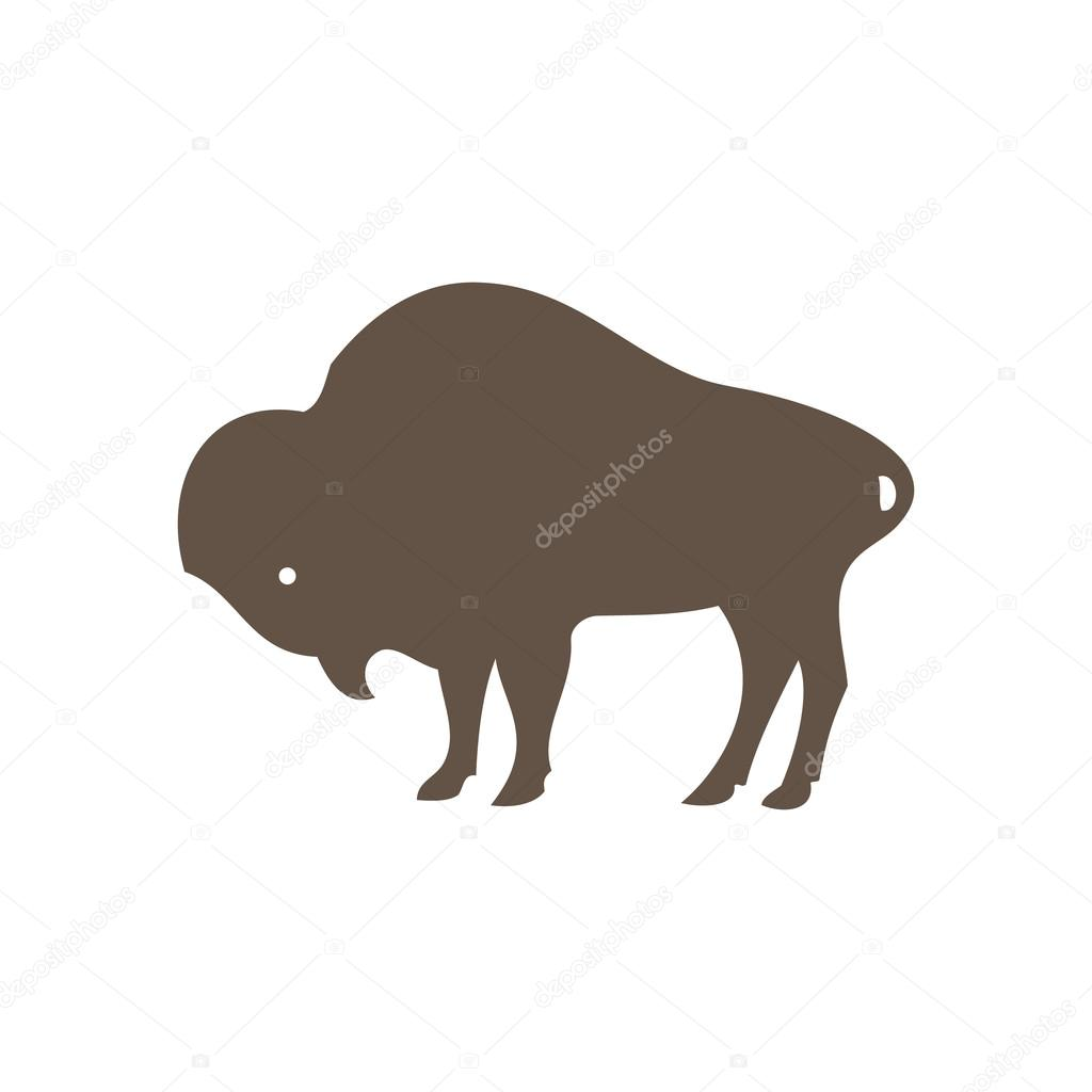 Buffalo Bulls And Cows