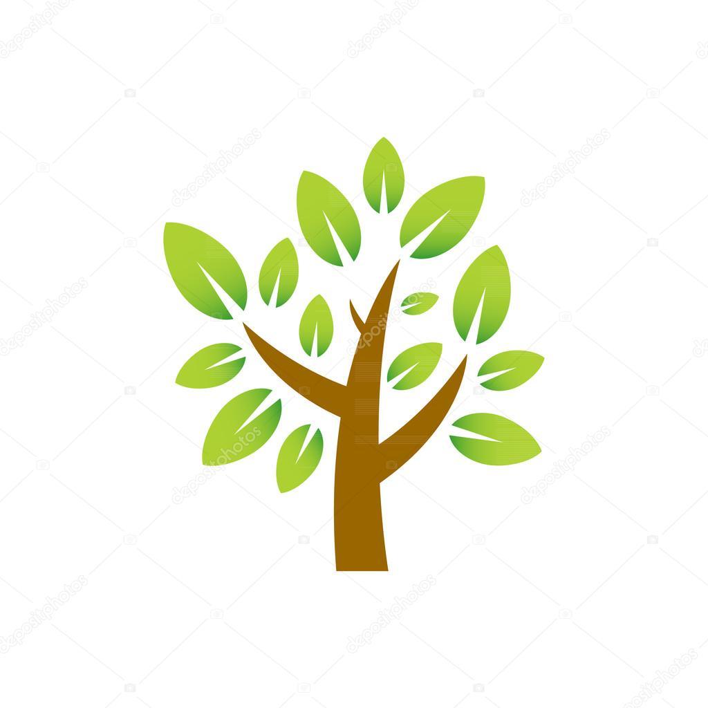 Plum Tree Nature