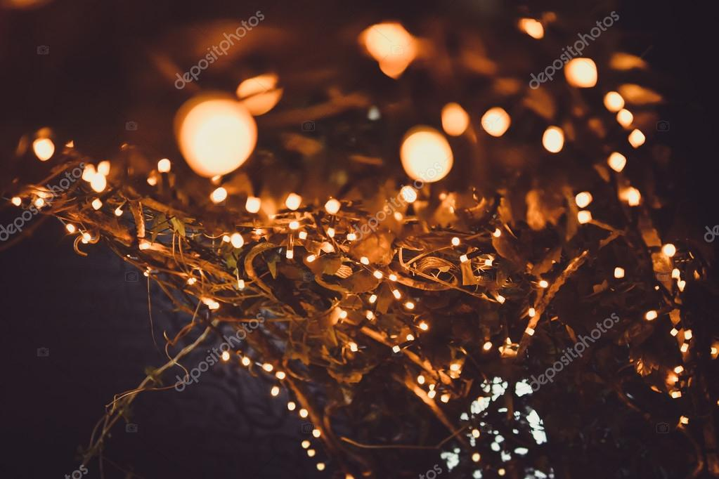 Abstract Christmas holiday backgrounds. Christmas tree and lights background.  HIGH QUALITY — Photo by trofimiuk.roman.gmail.com - Amazing Christmas Lights Background €� Stock Photo © Trofimiuk.roman