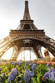 Berühmten eiffelturm in paris