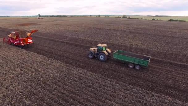 Repülés alatt burgonya fieldbeautiful a légi felvétel a traktor működik a mező