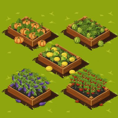 Vegetable Garden Box
