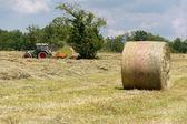 Traktor v kukuřičném poli