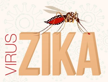 Zika Virus. Mosquito bite. Microcephaly in the infant. Editable Clip Art.