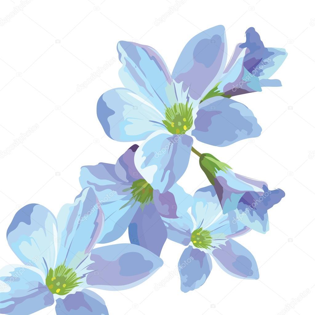 Hermosa Tarjeta Azul De Acuarela De Flores Archivo Imagenes