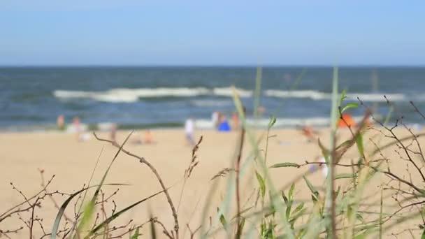 lidé na písečné pláži